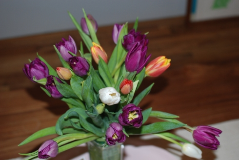 valentines-day-tulips-1