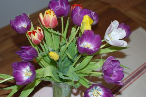 valentines-day-tulips-3