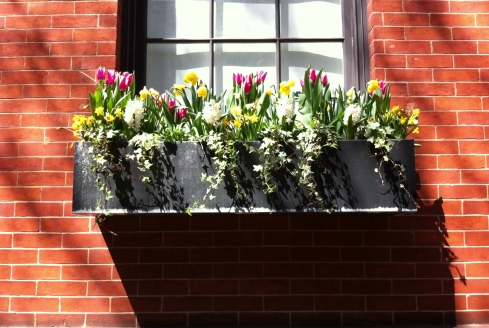 bank-street-flower-box